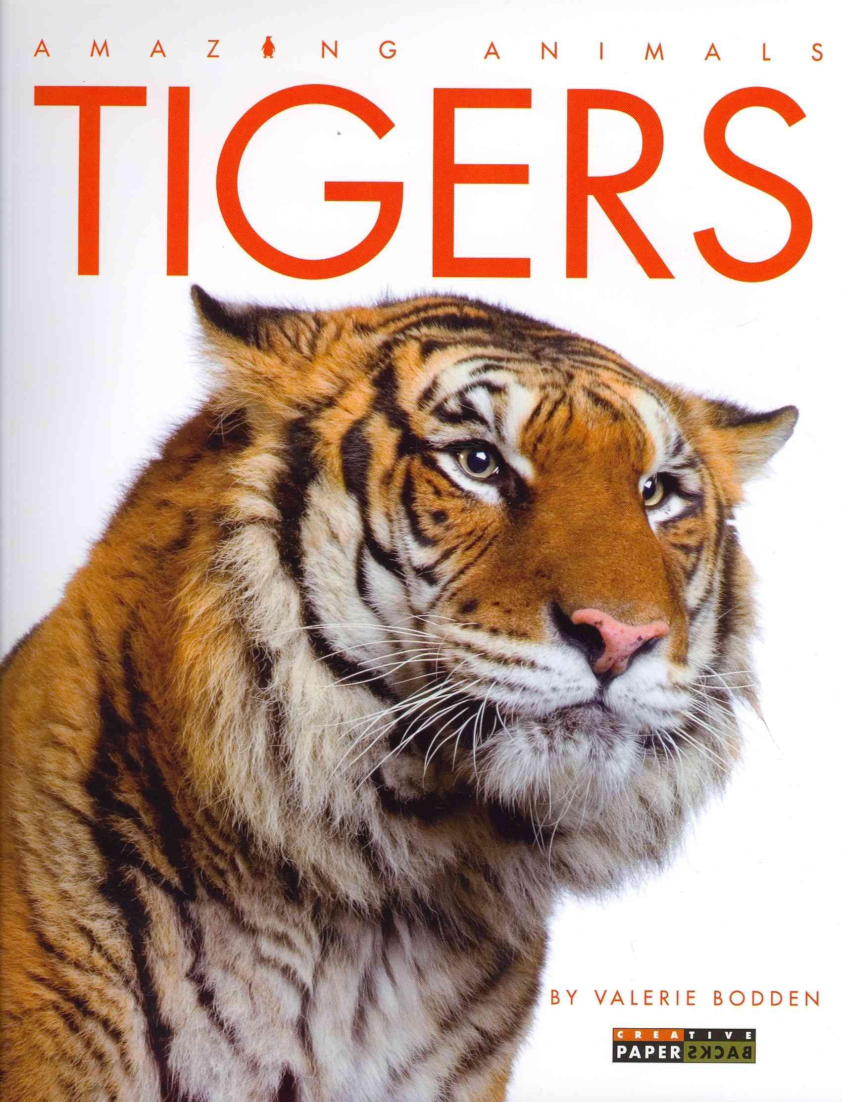 Lions, Tigers, Leopards, Etc.